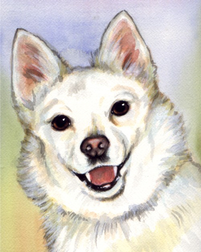 White Dog Watercolor Portrait Carol Wells