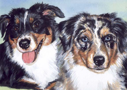 Australian Shepherd Dogs Watercolor Portrait Carol Wells